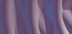 silk rodewald